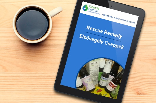 letölthető e-book
