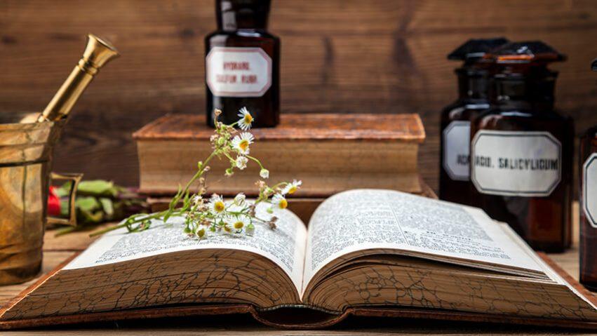 Gyógynövényismeret - hol tanulhatsz?
