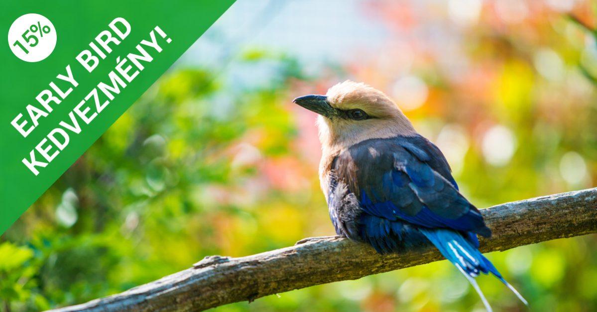 EszenciaCentrum Tanfolyamok 15 % early bird kedvezménnyel